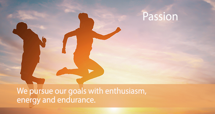 We pursue our goals with passion.